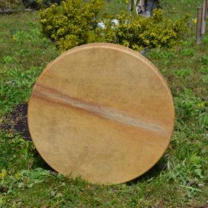 Drum Stick Horse